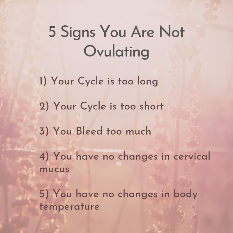 5 signs you are not ovulating - Zen Functional Wellness - Zen